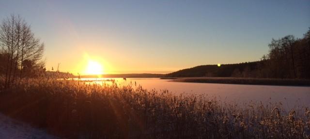 En morgonpromenad längs kalvfjärden i Tyresö.