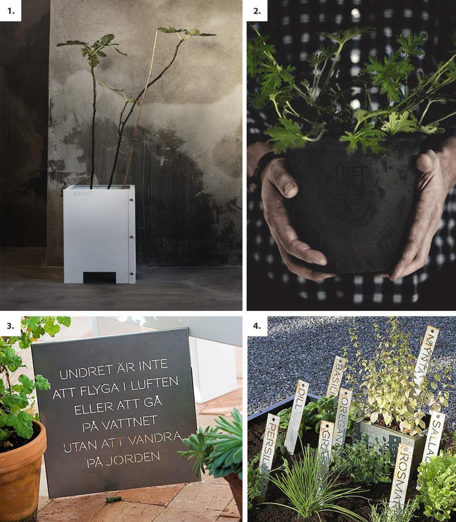 Trädgård Ernst