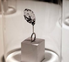 Ringar. Silver och organiskt material av Eva Skärlund, designstudent på Linköpings Universitet. Foto: Maria Sånge