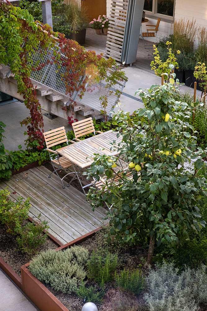 Odla på balkong i söderläge eller norrläge