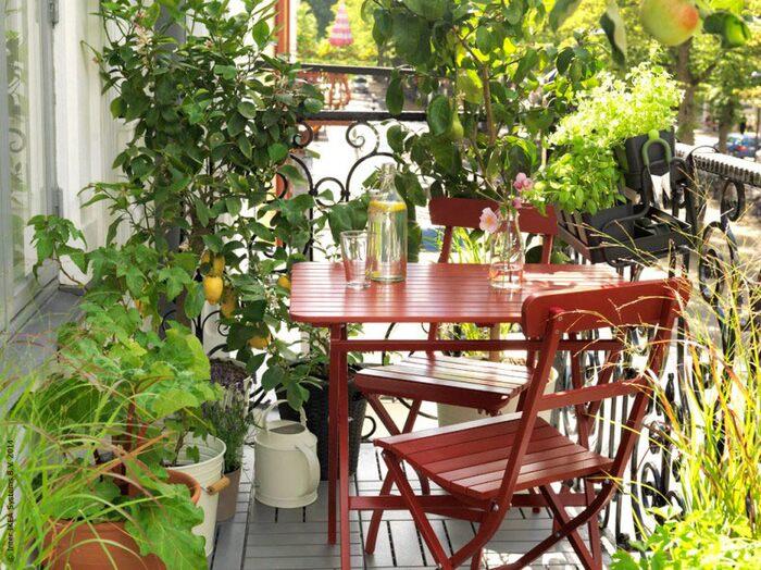Tips för att lyckas med odlingen på balkongen