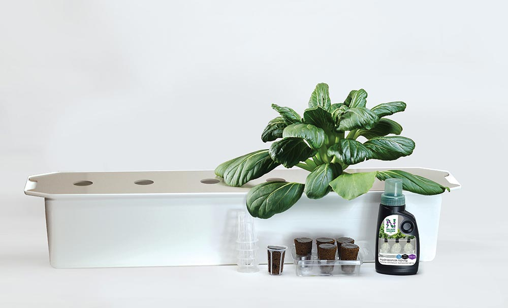 Kom igång med ett hydroponiskt odlings kit